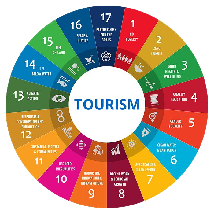 Wise Step Consulting Tourism Cycle